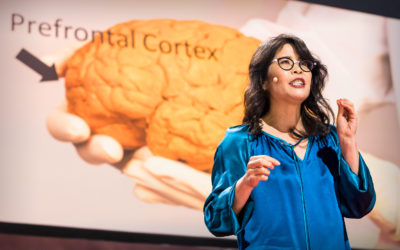 THE BRAIN CHANGING EFFECTS OF EXERCISE BY WENDY SUZUKI
